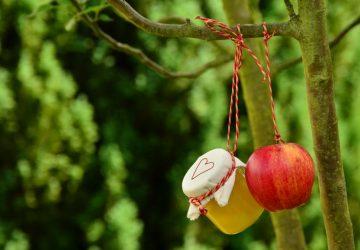 apple-tree-apple-apple-compote-jar-162760-360x250.jpg