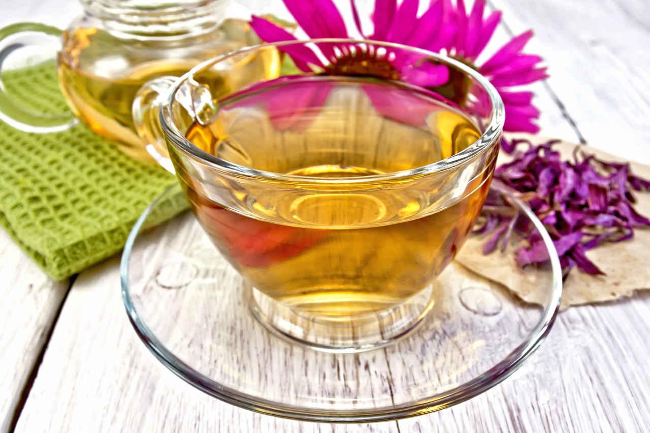 Yanında ekinezya bitkisi bulunan cam fincanda servis edilen ekinezya çayı